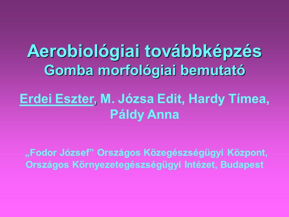 Aerobiológiai továbbképzés Gomba morfológiai bemutató