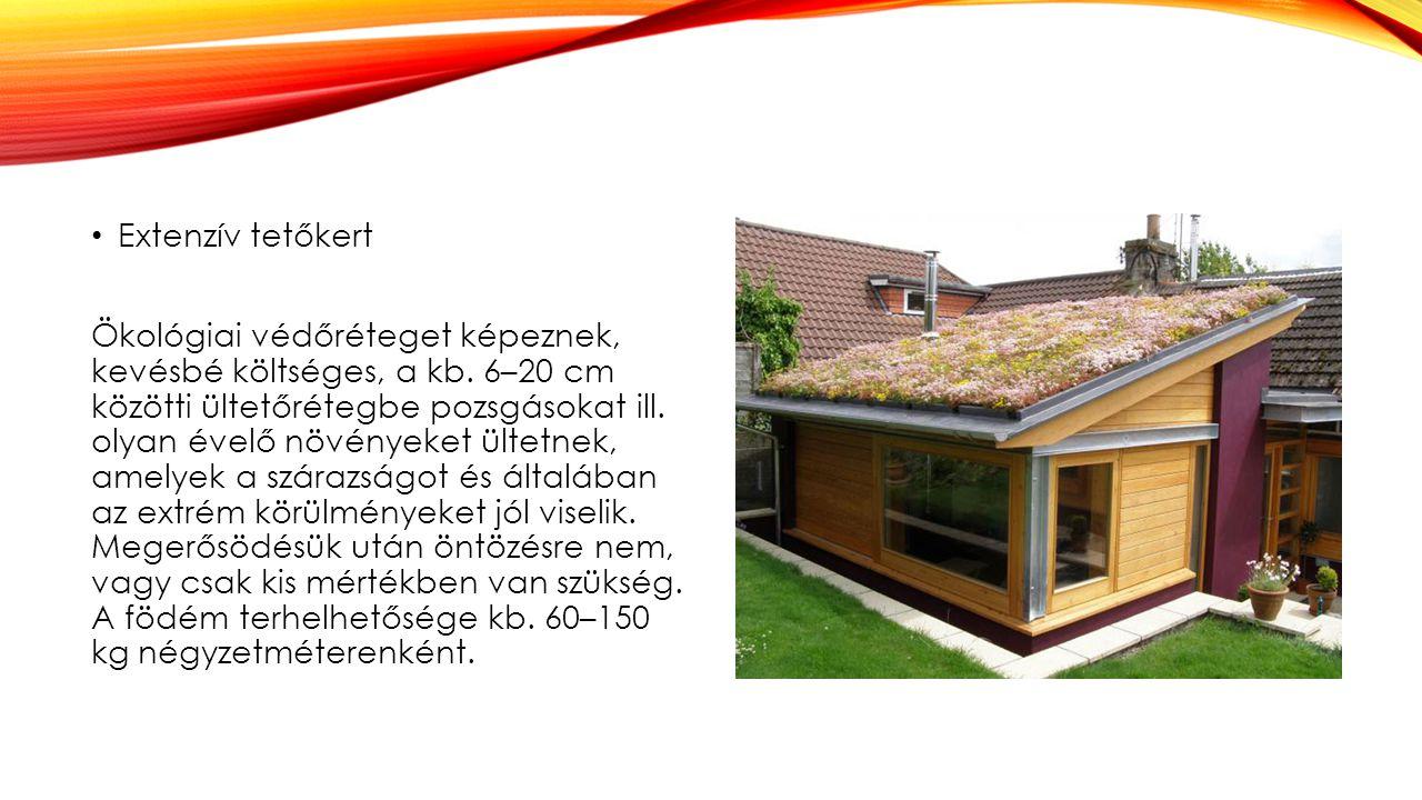 Extenzív tetőkert