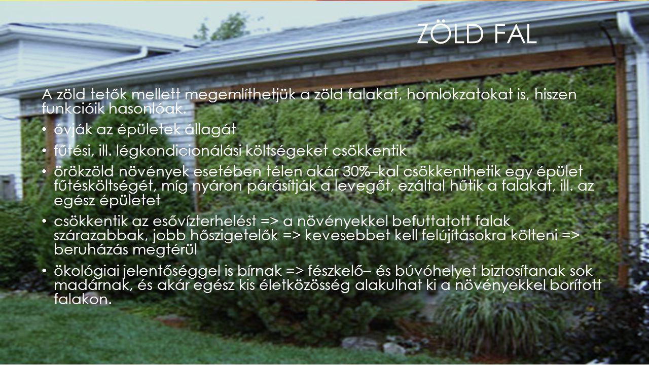 Zöld fal A zöld tetők mellett megemlíthetjük a zöld falakat, homlokzatokat is, hiszen funkcióik hasonlóak.