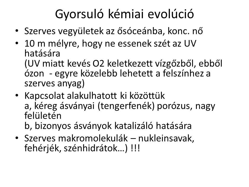 Gyorsuló kémiai evolúció