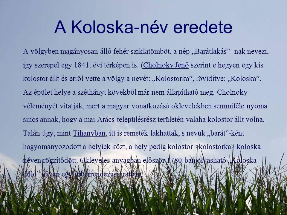 A Koloska-név eredete