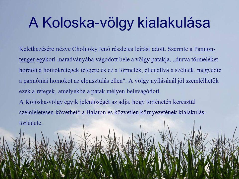 A Koloska-völgy kialakulása