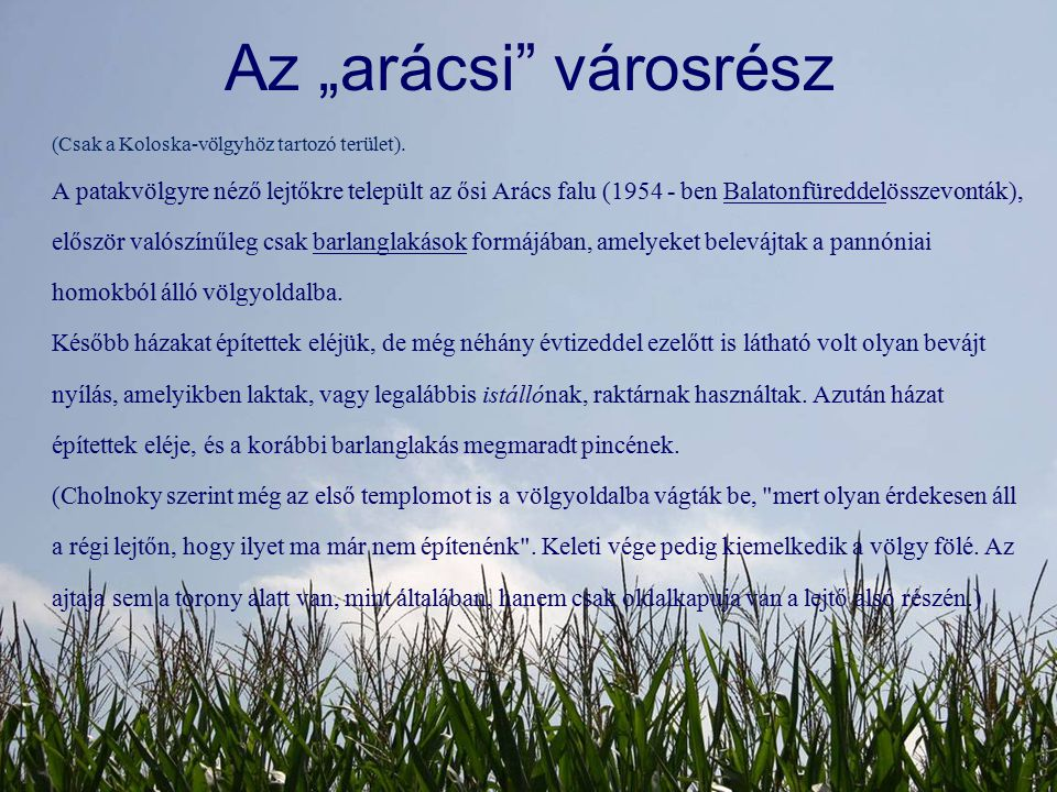 "Az ""arácsi városrész (Csak a Koloska-völgyhöz tartozó terület)."