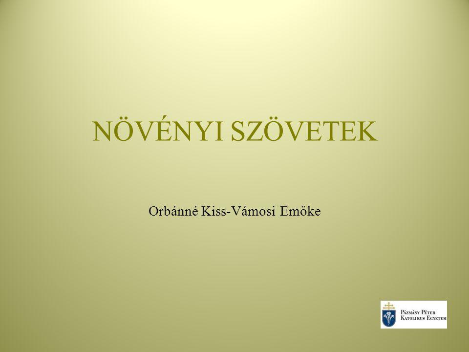 Orbánné Kiss-Vámosi Emőke