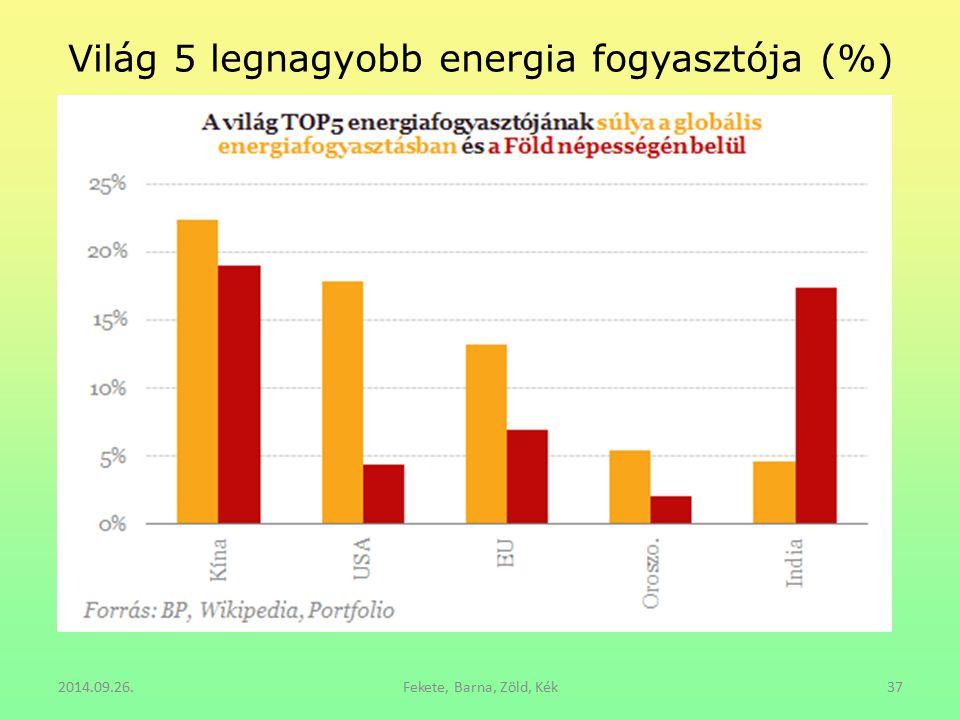 Világ 5 legnagyobb energia fogyasztója (%)