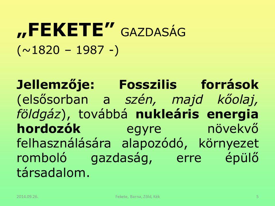 """""""FEKETE GAZDASÁG (~1820 – 1987 -)"""