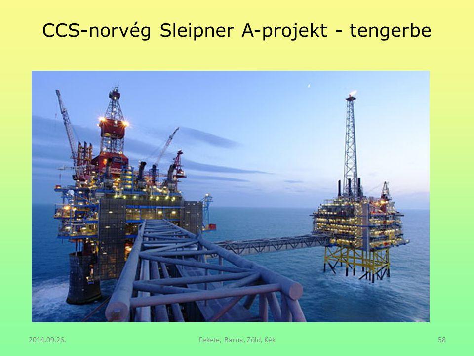CCS-norvég Sleipner A-projekt - tengerbe
