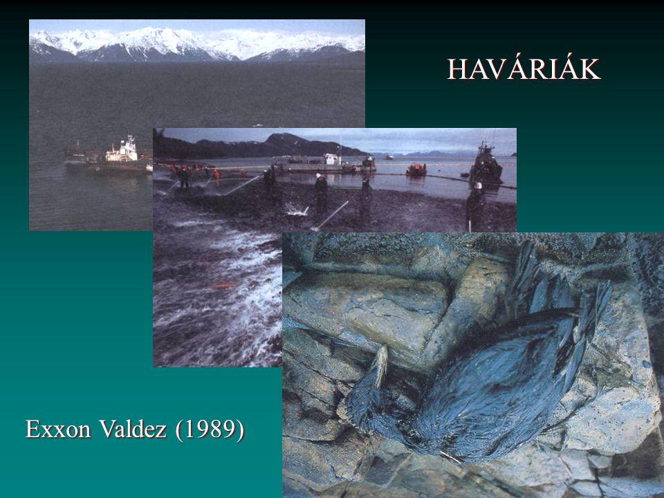 HAVÁRIÁK Exxon Valdez (1989)