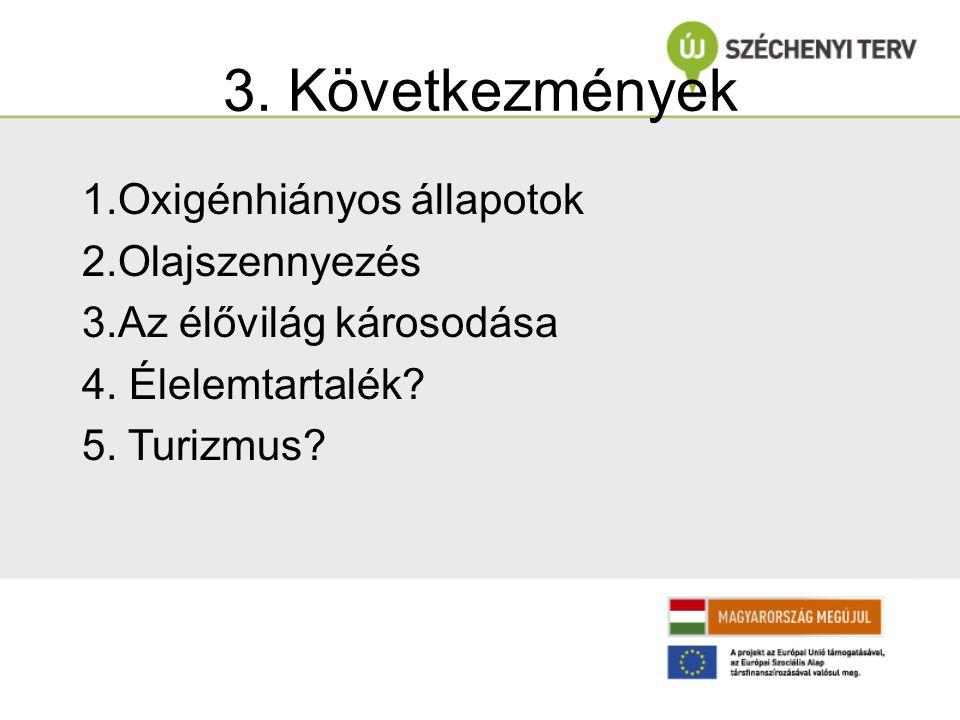 3. Következmények 1.Oxigénhiányos állapotok 2.Olajszennyezés
