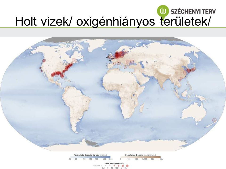 Holt vizek/ oxigénhiányos területek/