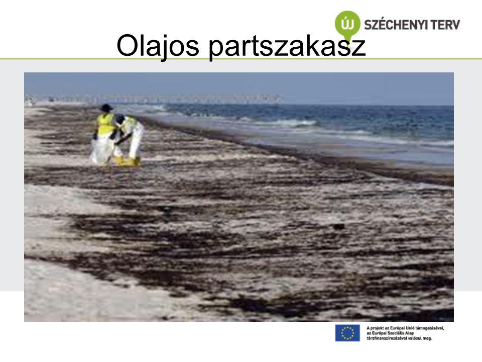 Olajos partszakasz www.parameter.sk/rovat/kulfold/211/01/06/mexikoi_obolben/092192358