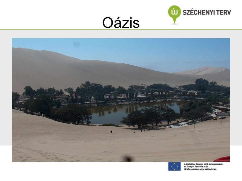 Oázis Verók Márta felvétele Peru. A tónak köszönhető a növényzet. Körben sivatagi homok