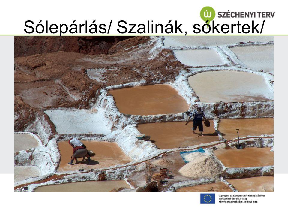 Sólepárlás/ Szalinák, sókertek/