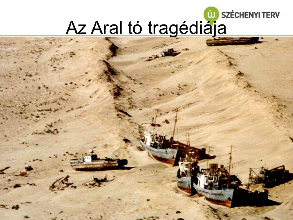 Az Aral tó tragédiája P.H. Gleick/ 1993/ In: Dr.