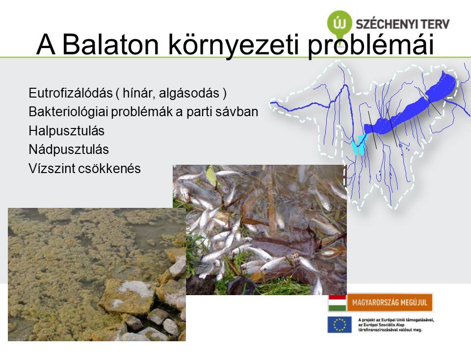 A Balaton környezeti problémái