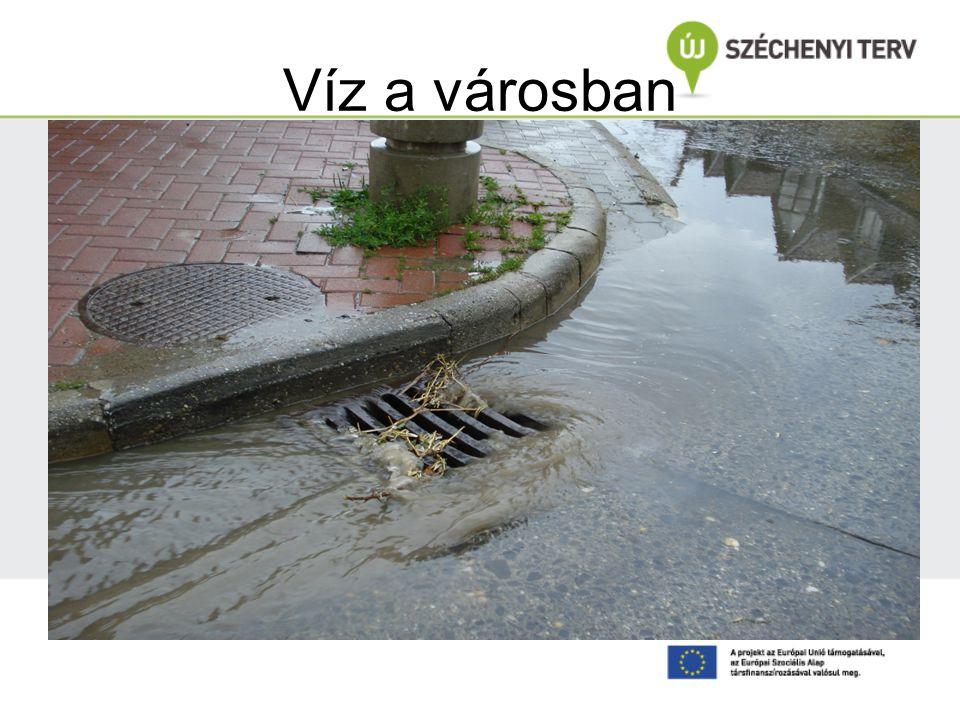 Víz a városban Horváth Kinga felvétele