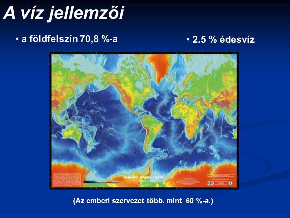 A víz jellemzői a földfelszín 70,8 %-a 2.5 % édesvíz