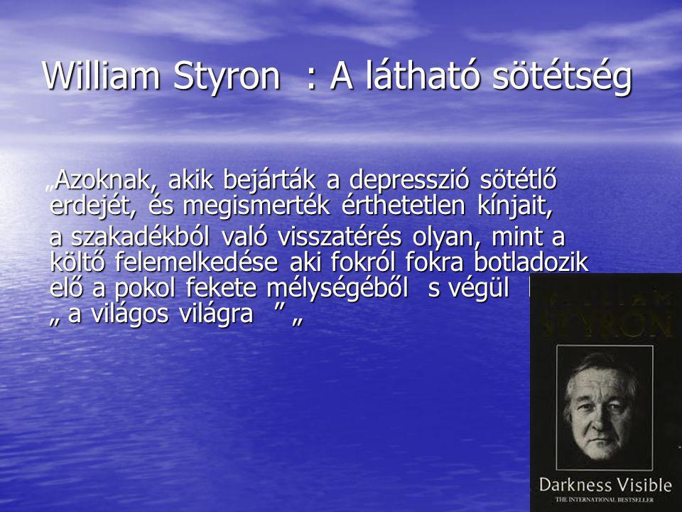 William Styron : A látható sötétség