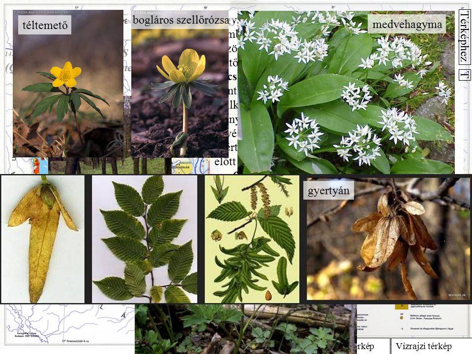 (Querco petraeae-Caprinetum)