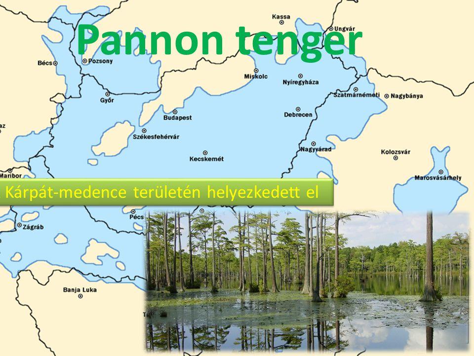 Pannon tenger A Kárpát-medence területén helyezkedett el