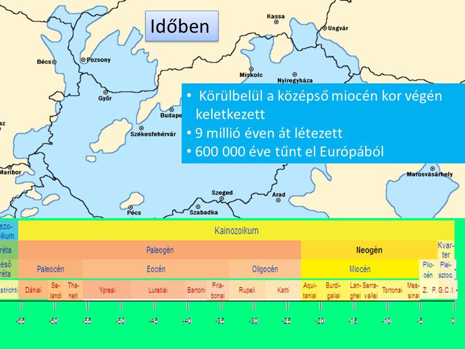 Időben Körülbelül a középső miocén kor végén keletkezett
