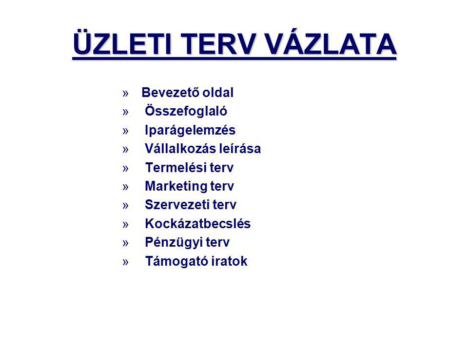 ÜZLETI TERV VÁZLATA Bevezető oldal Összefoglaló Iparágelemzés