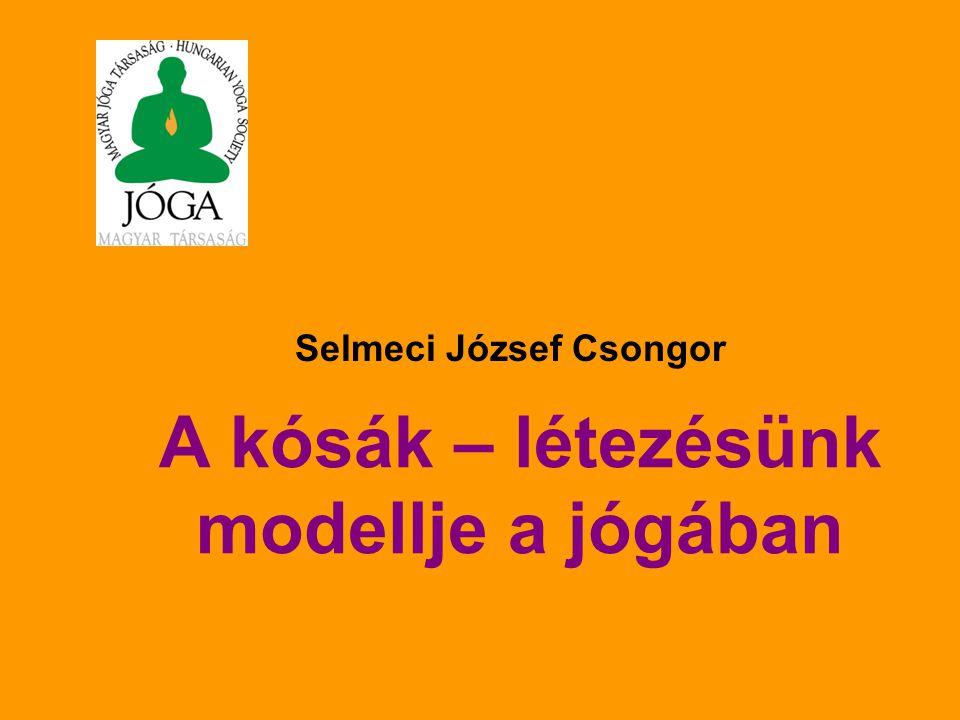 A kósák – létezésünk modellje a jógában