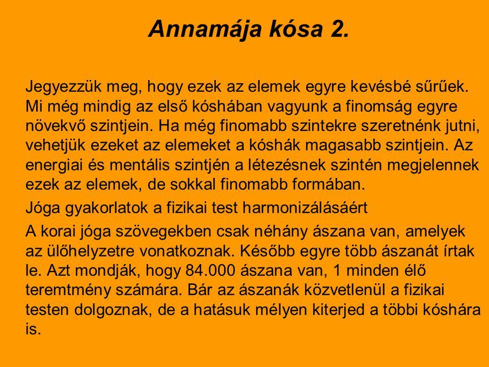 Annamája kósa 2.