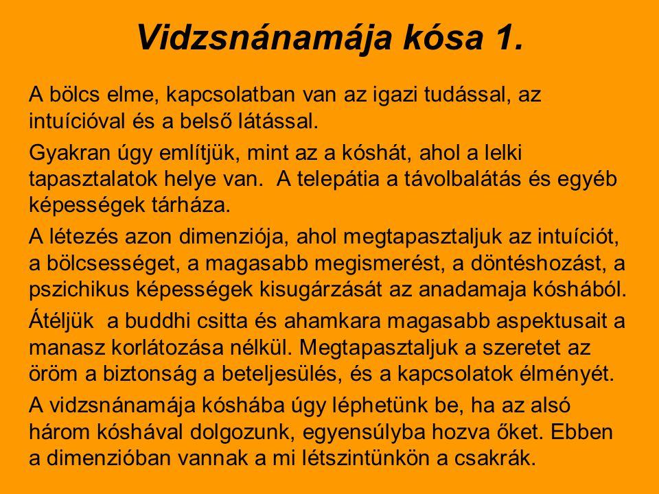 Vidzsnánamája kósa 1. A bölcs elme, kapcsolatban van az igazi tudással, az intuícióval és a belső látással.