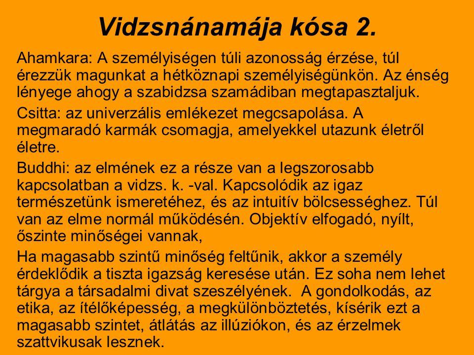 Vidzsnánamája kósa 2.