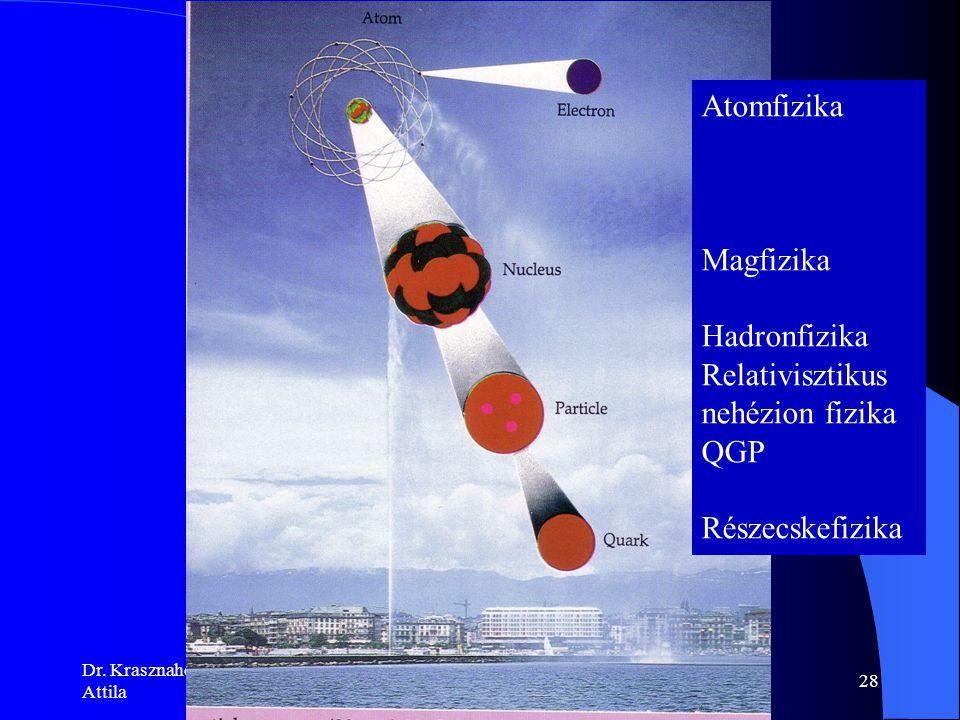 Relativisztikus nehézion fizika QGP Részecskefizika