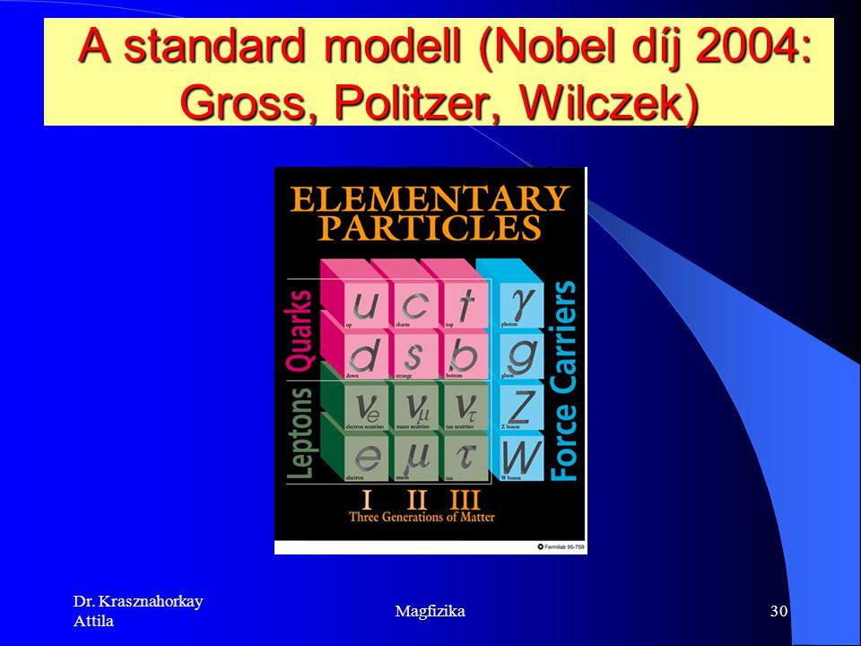 A standard modell (Nobel díj 2004: Gross, Politzer, Wilczek)