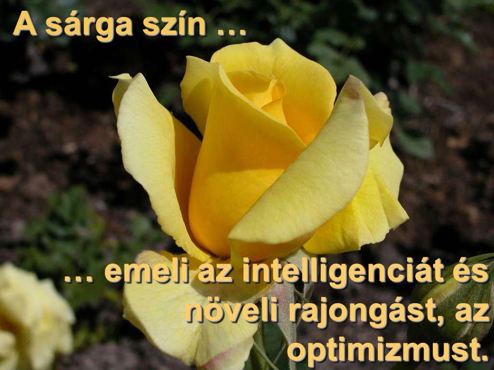 A sárga szín … … emeli az intelligenciát és növeli rajongást, az optimizmust.