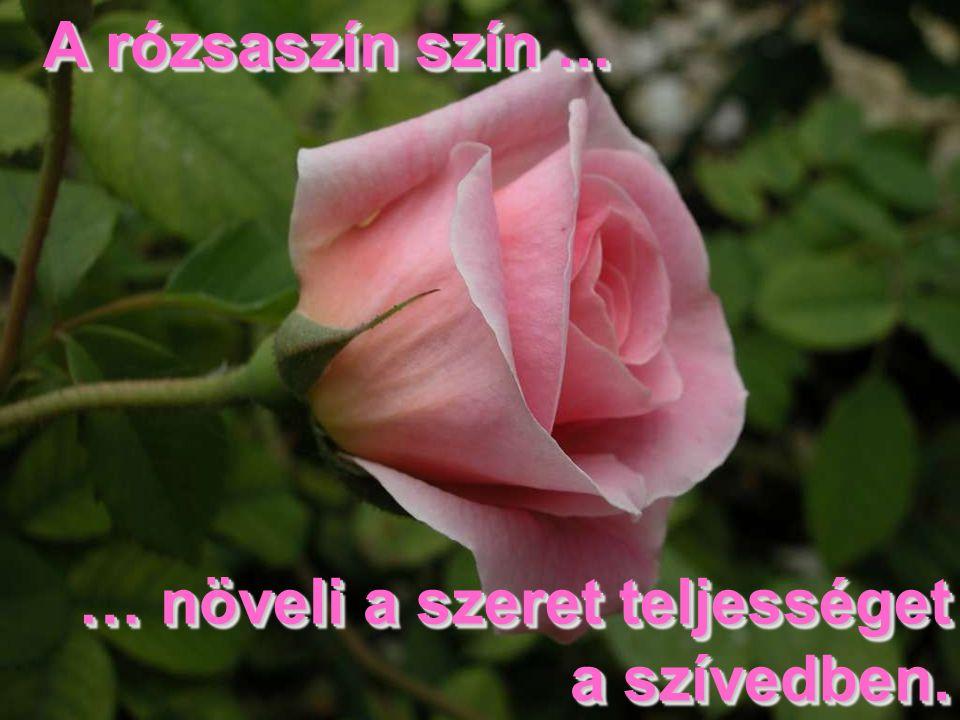 A rózsaszín szín ... … növeli a szeret teljességet a szívedben.