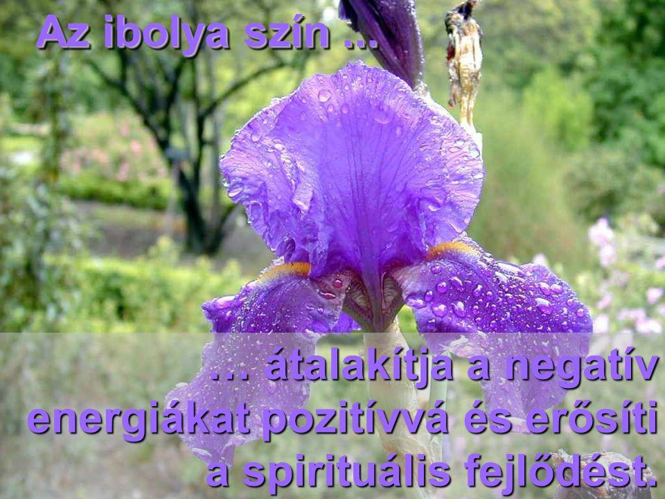 Az ibolya szín ... … átalakítja a negatív energiákat pozitívvá és erősíti a spirituális fejlődést.