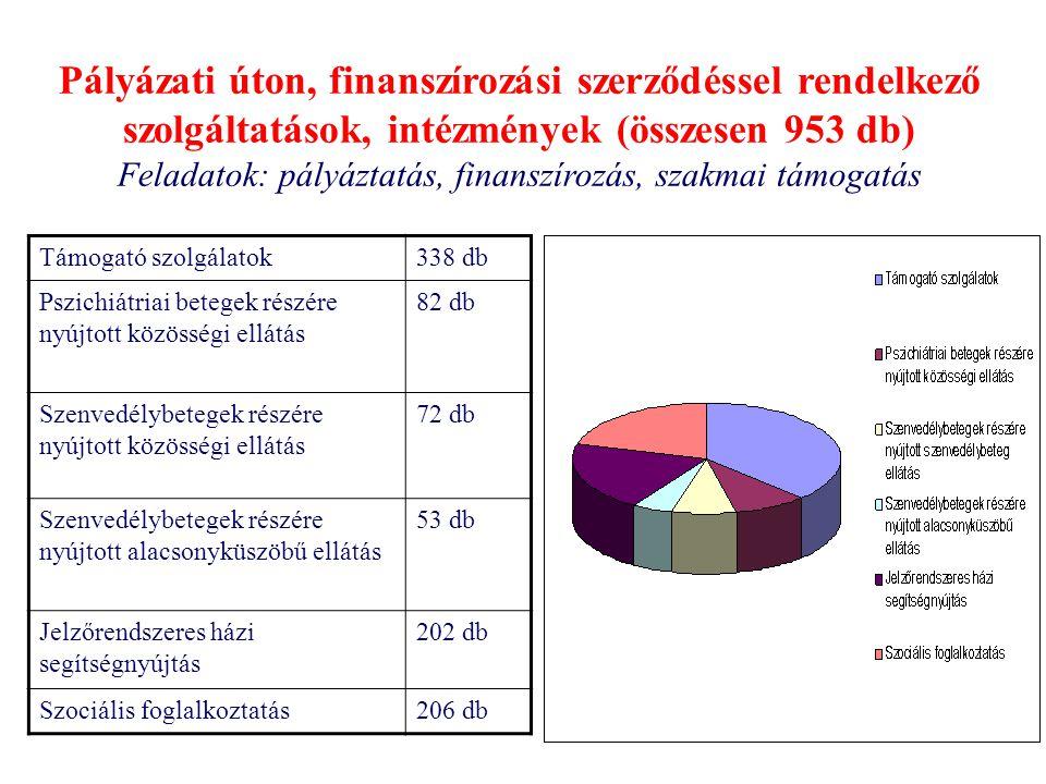 Pályázati úton, finanszírozási szerződéssel rendelkező szolgáltatások, intézmények (összesen 953 db) Feladatok: pályáztatás, finanszírozás, szakmai támogatás