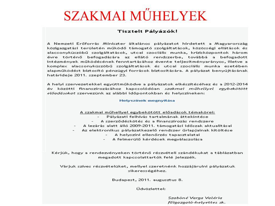 SZAKMAI MŰHELYEK 52