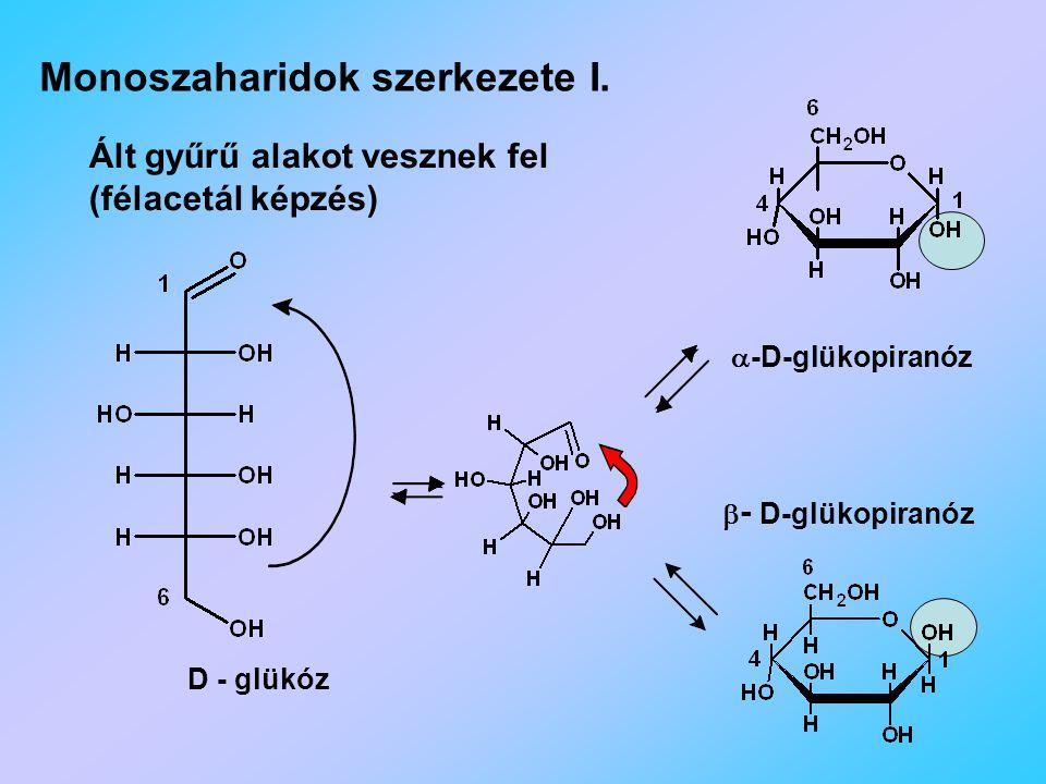 Monoszaharidok szerkezete I.