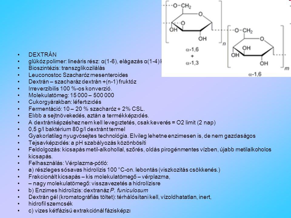 DEXTRÁN glükóz polimer: lineáris rész: α(1-6), elágazás α(1-4) kötéssel. Bioszintézis: transzglikozilálás.