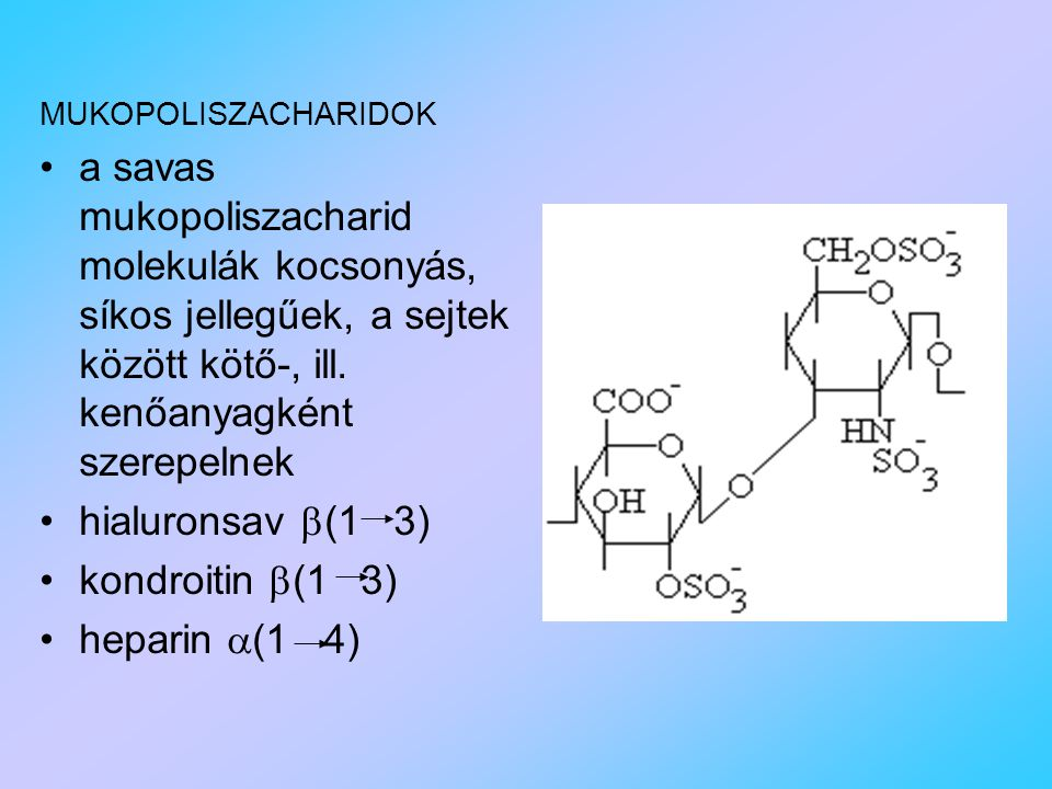 MUKOPOLISZACHARIDOK a savas mukopoliszacharid molekulák kocsonyás, síkos jellegűek, a sejtek között kötő-, ill. kenőanyagként szerepelnek.