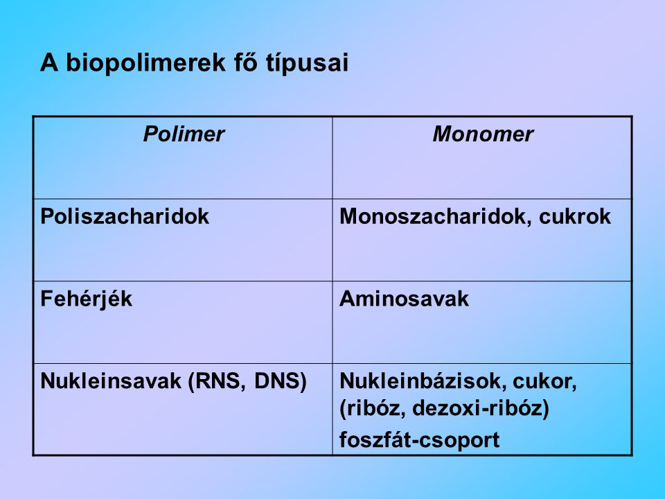 A biopolimerek fő típusai