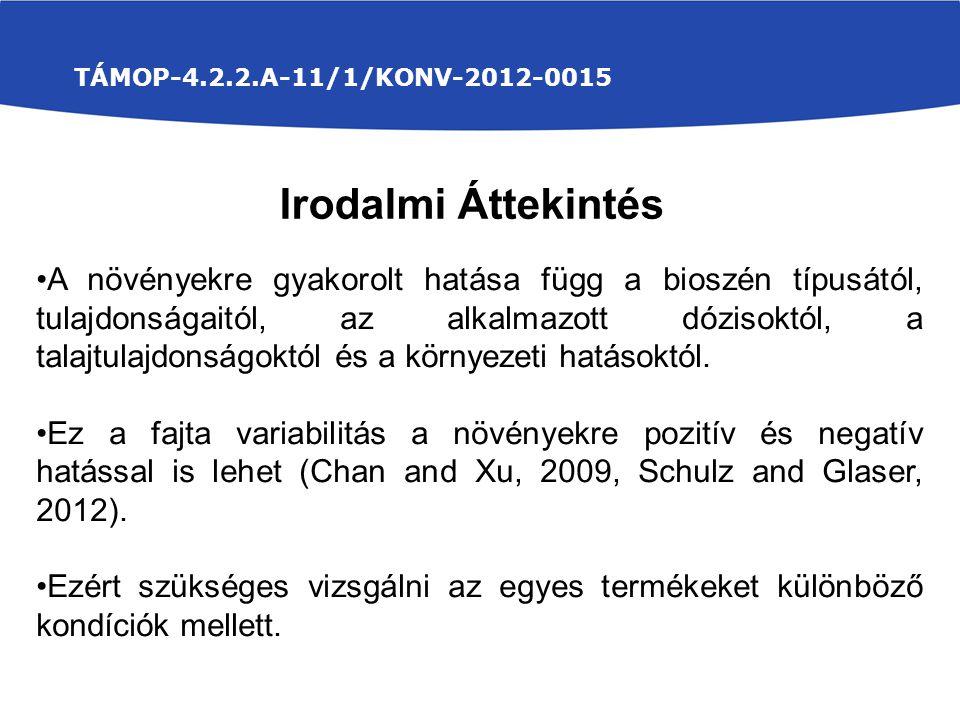 TÁMOP-4.2.2.A-11/1/KONV-2012-0015 Irodalmi Áttekintés.