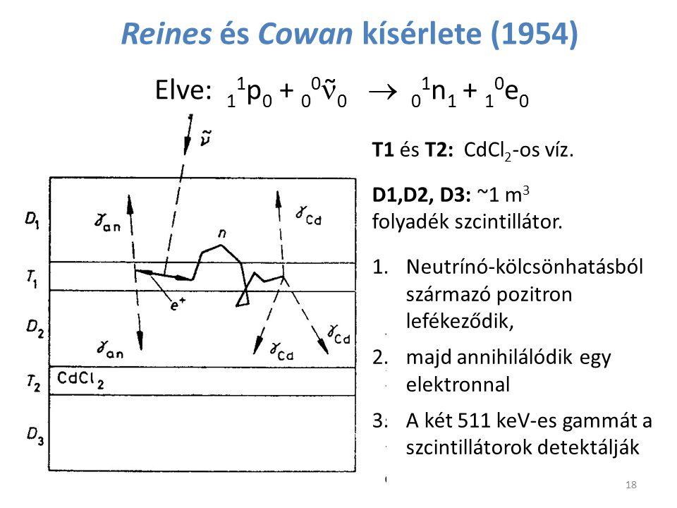 Reines és Cowan kísérlete (1954)