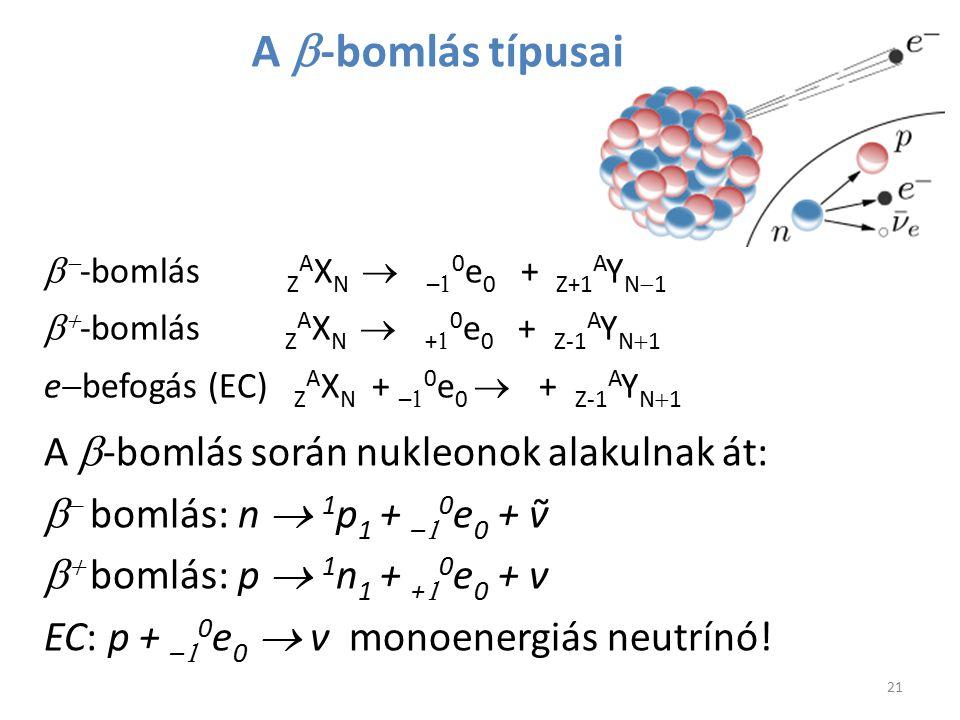 A b-bomlás típusai A b-bomlás során nukleonok alakulnak át: