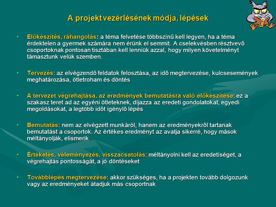 A projekt vezérlésének módja, lépések