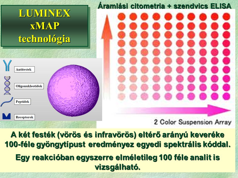 LUMINEX xMAP technológia