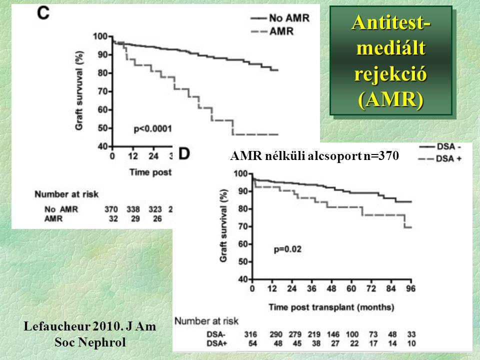 Antitest-mediált rejekció (AMR) Lefaucheur 2010. J Am Soc Nephrol