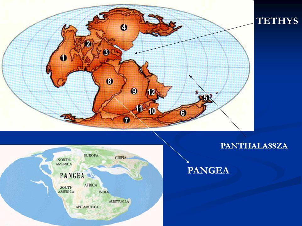 TETHYS PANTHALASSZA PANGEA
