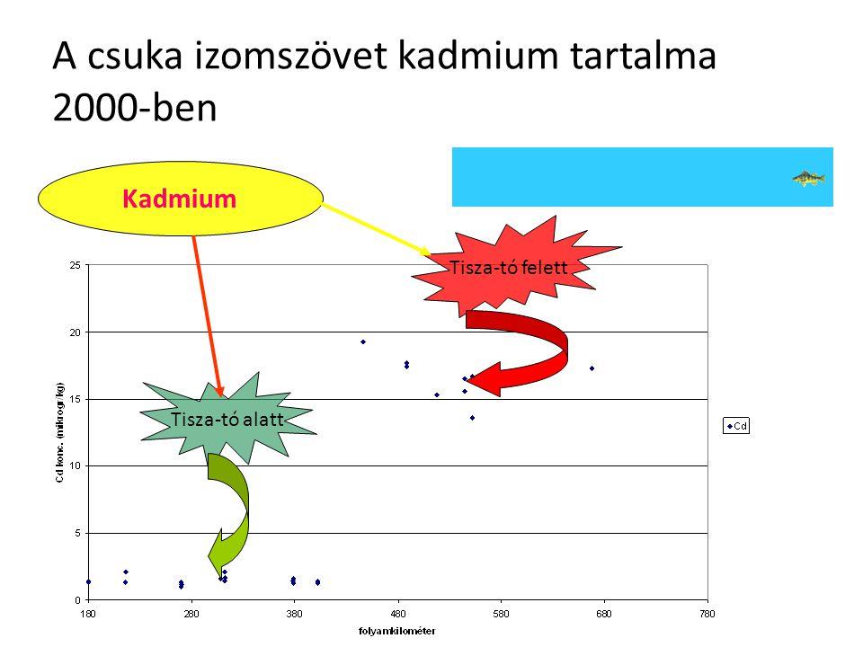 A csuka izomszövet kadmium tartalma 2000-ben