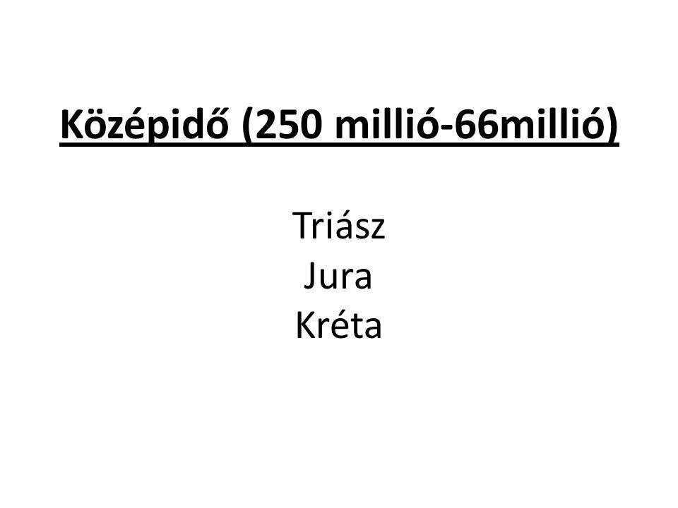 Középidő (250 millió-66millió) Triász Jura Kréta